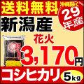 29年産新潟産コシヒカリ花火 5kg
