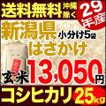 【地域限定】29年産新潟県産自然乾燥コシヒカリ あらいのはさかけ 小分け5袋 25kg