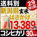 【地域限定】29年産新潟県産自然乾燥コシヒカリ あらいのはさかけ 30kg 小分け6袋【送料別】