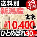 29年産新潟県産ひとめぼれ玄米 30kg 小分け6袋【送料別】