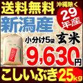 29年産新潟県産こしいぶき玄米 小分け5袋 25kg