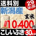 29年産新潟県産こしいぶき玄米 30kg【送料別】