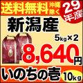 【新米】29年産 ありがとう三米 10kg(5kg×2) (品種名:いのちの壱)