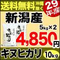 29年産新潟県産キヌヒカリ 10kg(5kg×2)
