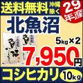 【地域限定】29年産新潟県北魚沼産コシヒカリ 10kg(5kg×2)