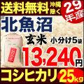 【地域限定】地域限定 29年産新潟県北魚沼産コシヒカリ 25kg