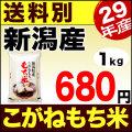 【新米】29年産新潟県産こがねもち米 1kg