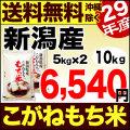 29年産新潟県産こがねもち米 10kg(5kg×2)