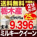 29年産栃木県産ミルキークイーン玄米 小分け5袋 25kg