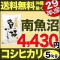 【地域限定】29年産新潟県南魚沼産コシヒカリ 5kg