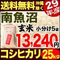【地域限定】29年産新潟県南魚沼産コシヒカリ 小分け5袋 25kg