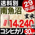 【地域限定】29年産新潟県南魚沼産コシヒカリ 30kg 小分け6袋【送料別】