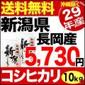 【新米】29年産新潟県長岡産コシヒカリ 10kg(5kg×2)