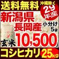 【新米】29年産新潟県長岡産コシヒカリ玄米 25kg