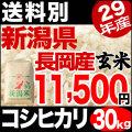 【新米】29年産新潟県長岡産コシヒカリ玄米 30kg【送料別】