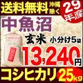 【地域限定】29年産新潟県中魚沼産コシヒカリ 小分け5袋 25kg