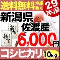 29年産新潟県佐渡産コシヒカリ 10kg(5kg×2)
