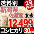 29年産新潟県佐渡産コシヒカリ玄米 30kg【送料別】