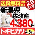 29年産新潟県佐渡産トキひかり白米 4.5kg