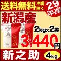 29年産新潟県産 新之助 4kg(2kg×2袋)