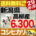 【地域限定】29年産新潟県高柳産コシヒカリ 10kg(5kg×2)