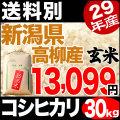 【地域限定】29年産新潟県高柳産コシヒカリ玄米 30kg【送料別】