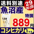 【新米】特選 29年産新潟県魚沼産コシヒカリ 1kg