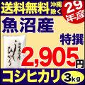 特選 29年産新潟県魚沼産コシヒカリ 3kg