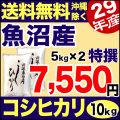 特選 29年産魚沼産コシヒカリ 10kg(5kg×2)