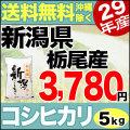 【地域限定】29年産新潟県栃尾西谷地区産コシヒカリ 5kg