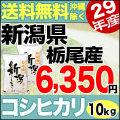 【地域限定】29年産新潟県栃尾産コシヒカリ 10kg(5kg×2)