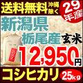 【地域限定】29年産新潟県栃尾西谷地区産コシヒカリ玄米 小分け5袋 25kg