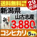 【地域限定】29年産新潟県山古志産コシヒカリ 5kg