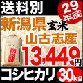 【地域限定】29年産新潟県山古志産コシヒカリ玄米 30kg 小分け6袋【送料別】