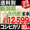 【地域限定】29年産新潟県矢代産コシヒカリ玄米 30kg 小分け6袋【送料別】
