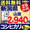 29年産新潟県産コシヒカリ 山並 5kg