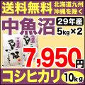 【地域限定】29年産新潟県中魚沼産コシヒカリ 10kg(5kg×2)