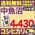 【地域限定】29年産新潟県中魚沼産コシヒカリ 5kg