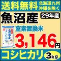 【窒素置換米】29年産新潟県魚沼産コシヒカリSFパック 3kg
