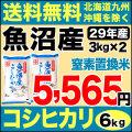 【窒素置換米】29年産新潟県魚沼産コシヒカリSFパック 6kg(3kg×2)