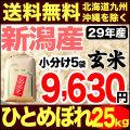 29年産新潟県産ひとめぼれ玄米 小分け5袋 25kg