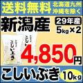 29年産新潟県産こしいぶき 10kg(5kg×2)