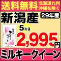 29年産新潟県産ミルキークイーン 5kg