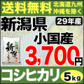 【地域限定】29年産新潟県小国産コシヒカリ 5kg