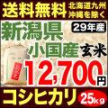 【地域限定】29年産新潟県小国産コシヒカリ玄米 小分け5袋 25kg