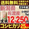 29年産新潟県佐渡産コシヒカリ玄米 小分け5袋 25kg
