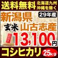 【地域限定】29年産新潟県山古志産コシヒカリ玄米 小分け5袋 25kg