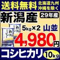 29年産新潟県産コシヒカリ 山並 10kg(5kg×2)
