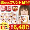 【29年産魚沼産コシヒカリ】 抱っこできる赤ちゃんプリントmini300g×11個セット