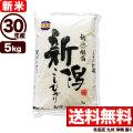 【新米】30年産新潟県佐渡産コシヒカリ 5kg